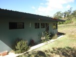 rosemary and lavendar bushes, yes bushses, grow outside 1 BR home and lot for sale in san ramon costa rica