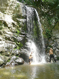 Coffee Farm Waterfalls