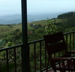 Business for Sale in San Ramon, Central Valley, Costa Rica
