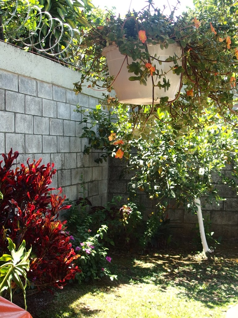 New House for Sale Palmares Costa Rica 150,000USD