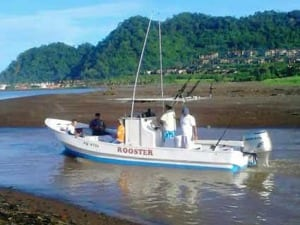 Rooster 29 Feet Fishing Boat