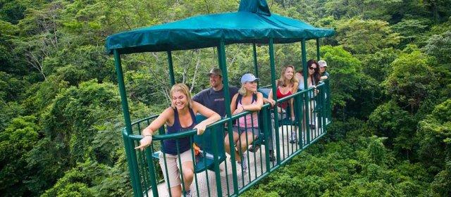 Rainforest Aerial Tram Tour