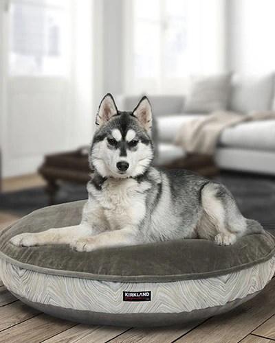 Costco Pet Insurance Usa on Costco Furniture Showroom Kirkland Washington id=57945