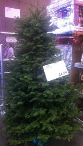 Costco Fresh Christmas Tree