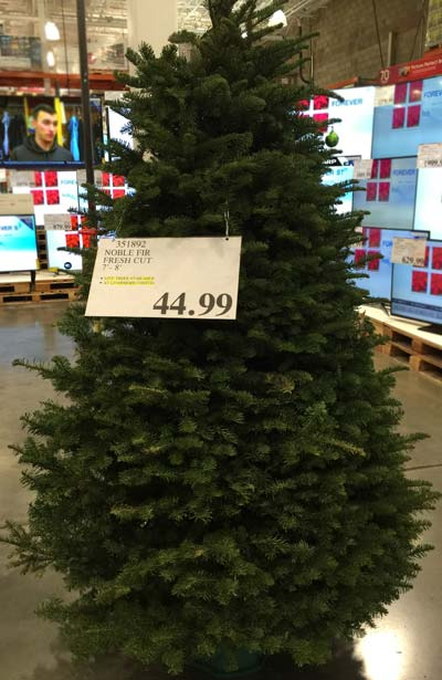 Artificial Prelit Christmas Trees Costco