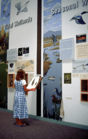 Exhibit Room