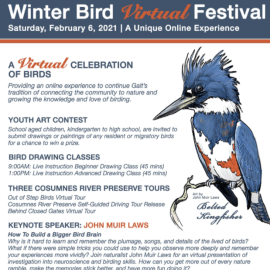 14th Annual Galt Winter Bird Festival