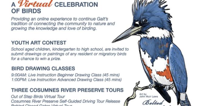 14th Annual Galt Winter Bird Festival