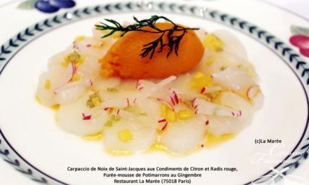 Carpaccio de Noix de Saint-Jacques aux Condiments de Citron et Radis rouge, Purée-mousse de Potimarr