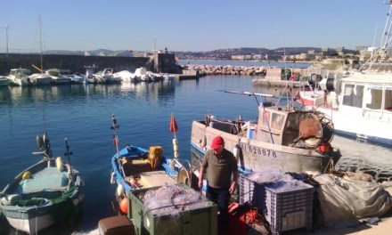 Photo de la semaine : Port Gallice