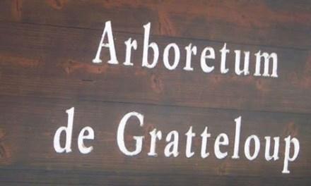 Arboretum de Gratteloup