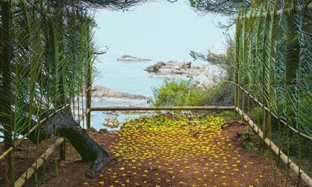 Exposition Nils-Udo, sur l'eau