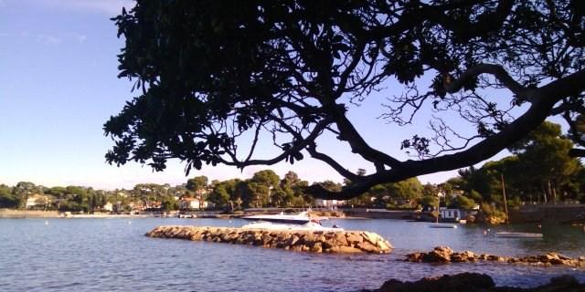 Photo de la semaine : L'automne au Cap d'Antibes