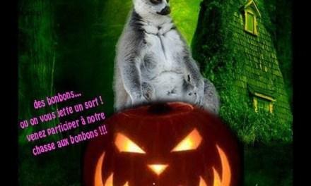 Venez fêter Halloween au Parc Zoologique de Fréjus