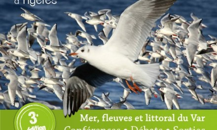 Rencontres Naturalistes PACA