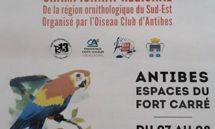 42e Salon de la Fleur et de l'Oiseau