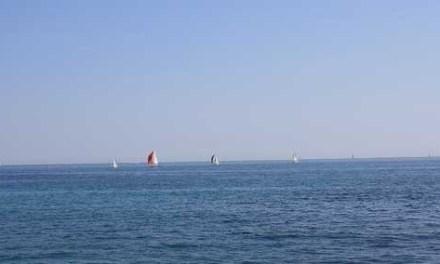 Cannes Marina,Mandelieu-la-Napoule