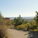 Jardin botanique - vue panoramique, Nathalie Marmillon©