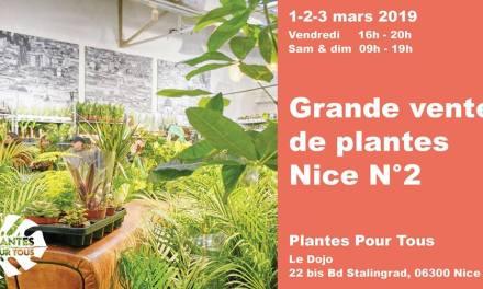 Grande Vente de Plantes Nice N°2