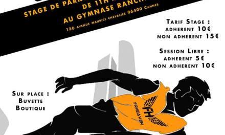 Stage de Parkour à Cannes