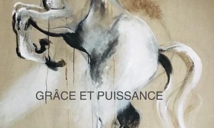 """""""GRÂCE ET PUISSANCE"""" EXPOSITION MONIQUE GASTAUD"""