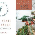 Le jardin Maison Bouture à Nice