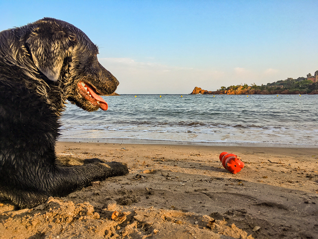 im Meer abkühlen und spielen