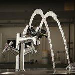 Speakman SEF-Saver 1850Eye Single Post Laboratory Faucet, Polished Chrome by Speakman