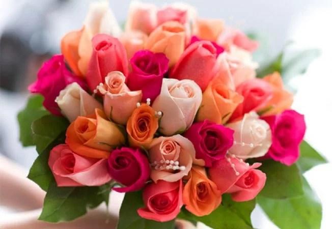 Floraria Ashanti