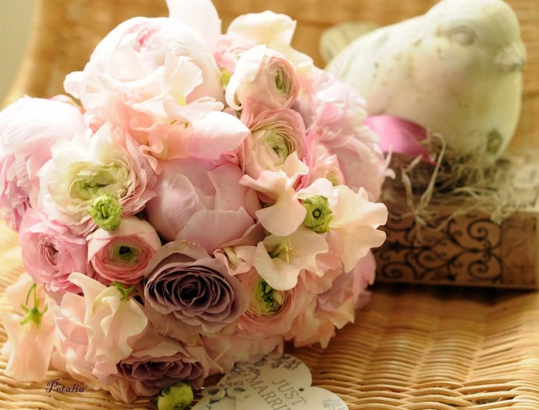 Floraria Petalia