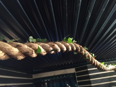 stratford-butterfly-farm-cotswolds-concierge-12