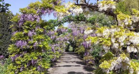 bruern-cottages-gardens-cotswolds-concierge (3)