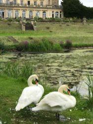 cowley-manor-kids-summer-cotswolds-concierge (25)