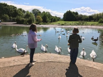 slimbridge-wetlands-centre-cotswolds-concierge (30)