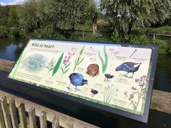 slimbridge-wetlands-centre-cotswolds-concierge (40)