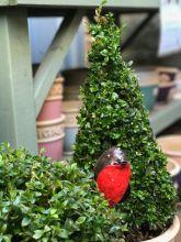 highgrove-garden-afternoon-tea-cotswolds-concierge (1)