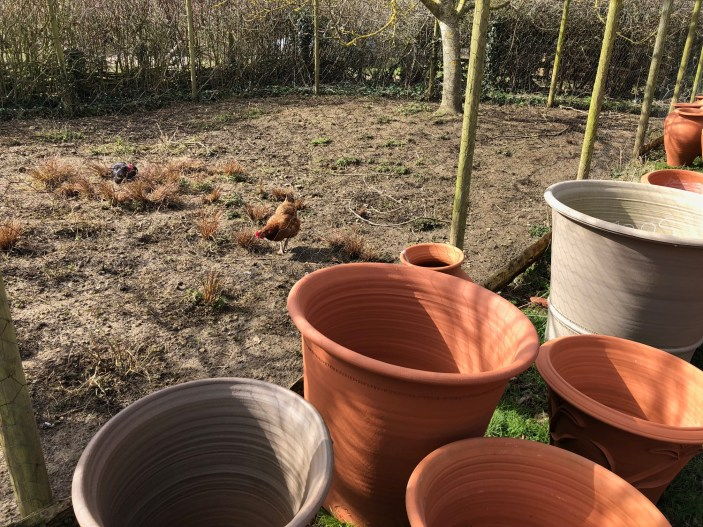 whichford-pottery-seconds-sale-cotswolds-concierge (21)