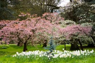 batsford-arboretum-cotswolds-concierge (4)