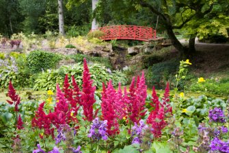 batsford-arboretum-cotswolds-concierge (7)
