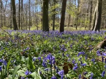 road-trip-northleach-bibury-yanworth-winchcombe-cotswolds-concierge-staycation (24)