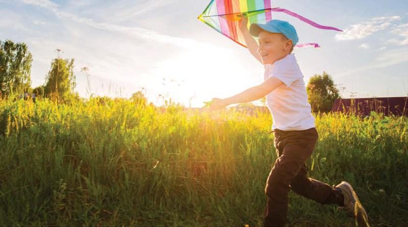 happy boy with a kite