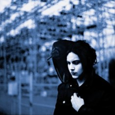 Cougar Microbes Top Albums of 2012: Jack White - Blunderpuss