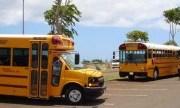school, buses