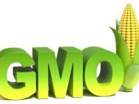 In the Shadow Of Monsanto: GMO Regulation And The Right To Know