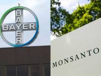 Monsanto And Bayer: Why Food And Agriculture Just Took A Turn For The Worse