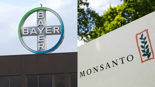 bayer-monsanto1