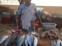 #HumansOfDemonetisedIndia: Stella, The Fish Vendor
