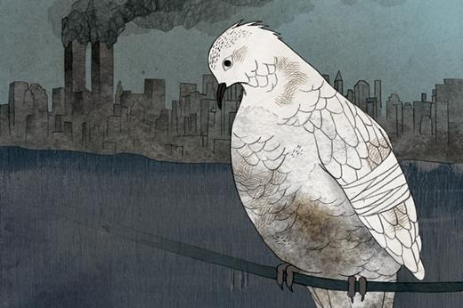 Illustration by Marco Cibola