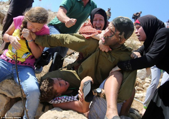 afp tamimi biting