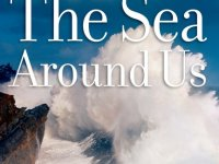 Risking Lives Over Ocean Mother Murder